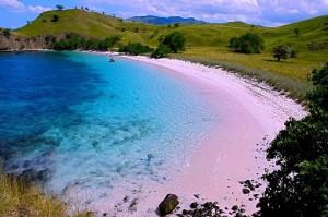 Pantai-Pink-Pulau-Komodo
